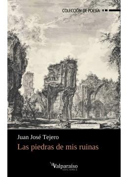241. Las piedras de mis ruinas